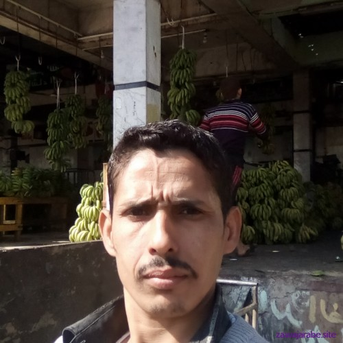 Picture of sayd011506, Man 38 years old, from Cairo Kairo